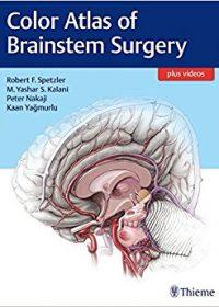 Color Atlas of Brainstem Surgery, 1e (Original Publisher PDF)