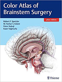 Color Atlas of Brainstem Surgery, 1e (Original Publisher PDF)