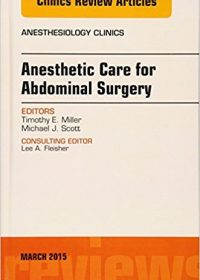 Anesthetic Care for Abdominal Surgery, An Issue of Anesthesiology Clinics, 1e (The Clinics: Internal Medicine) (Original Publisher PDF)