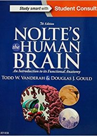 Nolte's The Human Brain: An Introduction to its Functional Anatomy, 7e (Original Publisher PDF)