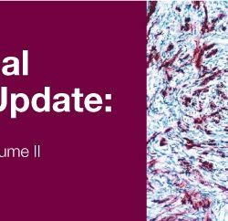 Surgical Pathology Update Diagnostic Pearls for the Practicing Pathologist 2018 (Videos)