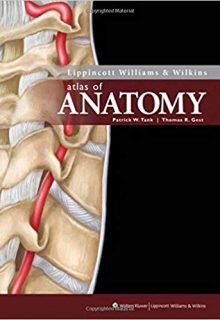 Lippincott Williams & Wilkins Atlas of Anatomy, 1e (Original Publisher PDF)