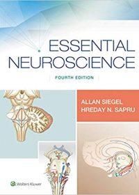 Essential Neuroscience, 4e (EPUB)