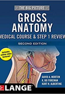 The Big Picture: Gross Anatomy, Medical Course & Step 1 Review, 2e (EPUB)