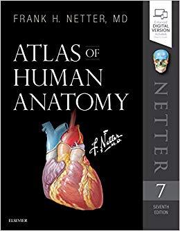 Atlas of Human Anatomy, 7e (Original Publisher PDF)
