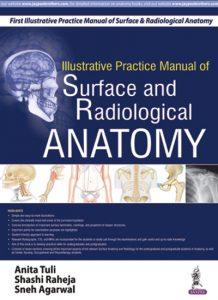 Radiological Anatomy Pdf