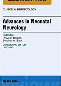 Advances in Neonatal Neurology, An Issue of Clinics in Perinatology, 1e (The Clinics: Internal Medicine) (Original Publisher PDF)