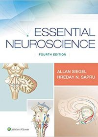 Essential Neuroscience, 4e (EPUB)