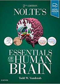 Nolte's Essentials of the Human Brain, 2e (Original Publisher PDF)
