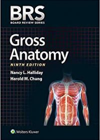 BRS Gross Anatomy, 9e (EPUB)
