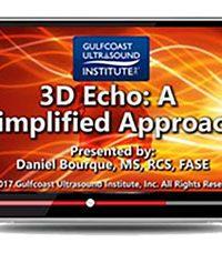 3D Echo: A Simplified Approach (Videos)