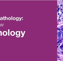 Classic Lectures in Pathology What You Need to Know Dermatopathology 2019 (Videos)